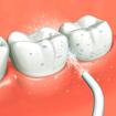 Изображение Персональный ирригатор полости рта Power Floss